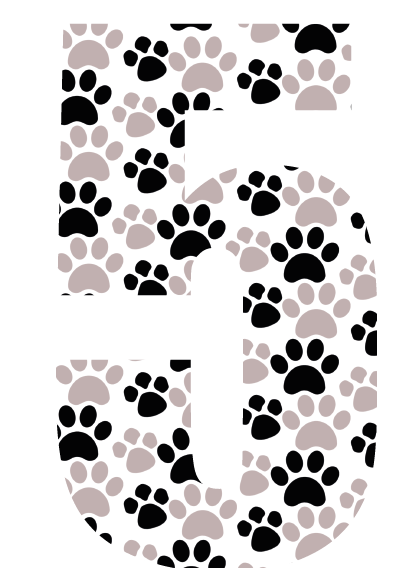 Paws Bin Number